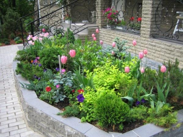 Сад и огород своими руками интересные идеи